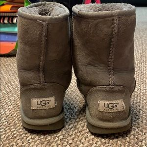 Short Grey Uggs